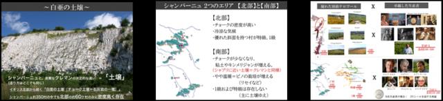 CVP_report